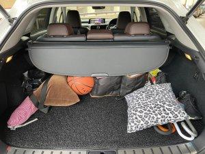 Lexus RX Turbo RX200t Luxury Sunroof