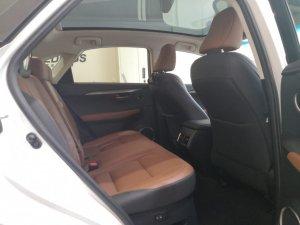 Lexus NX Turbo NX200t Luxury Sunroof
