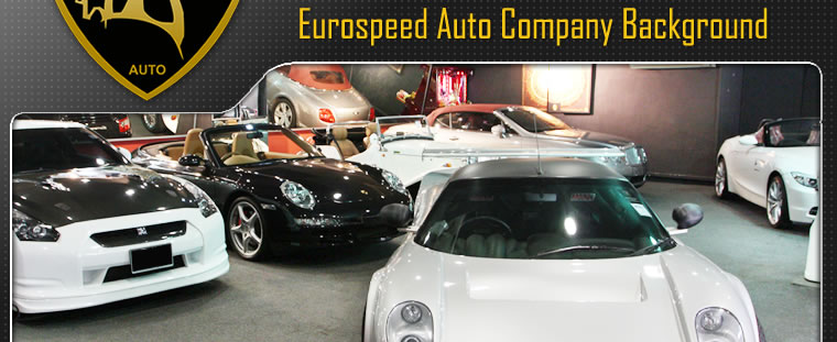 Eurospeed Auto Company Background