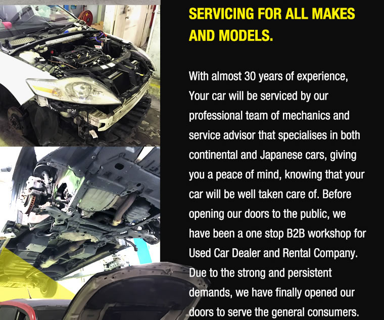 Servicing for all makes and models