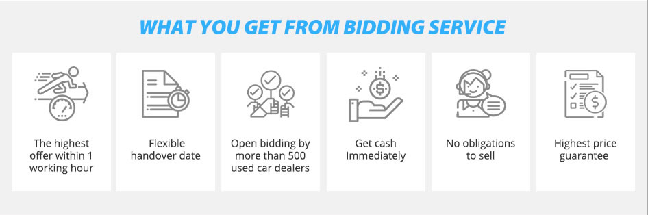 What You Get From The Bidding