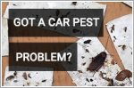Recommended NEA certified car pest fumigation & removal Services in Singapore