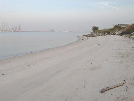 Tuas South Beach2