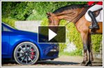 Seat Leon Cupra and show jumping horse measure up