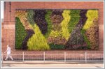 Bentley installs living green wall at Crewe
