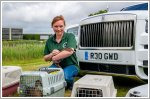 Rolls-Royce now hosts ducks at its Goodwood site