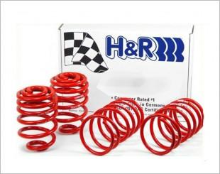 H&R Race Springs