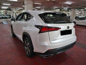 Lexus NX300 Luxury MR