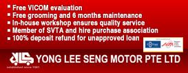 Yong Lee Seng Motor
